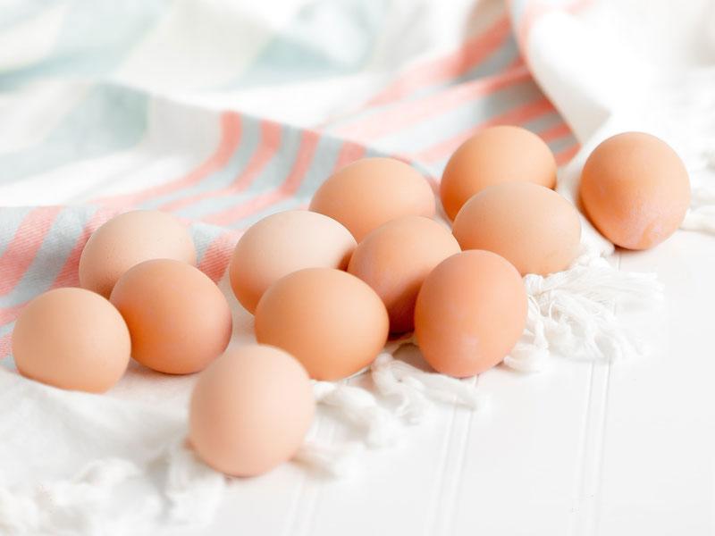 高タンパク質で低カロリーな食べ物04